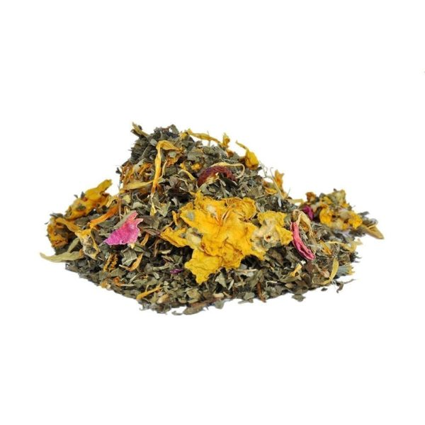Anise Herbal 1